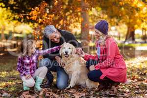 Family stroking dog while crouching at park