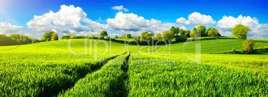 Ländliche Idylle, Panorama mit weiten grünen Wiesen und blauem