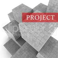 Project Blocks Indicates Mission Plan 3d Rendering