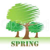 Spring Trees Indicates Nature Woods And Springtime