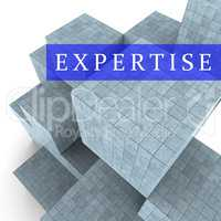 Expertise Blocks Represents Master Skills 3d Rendering