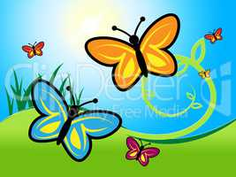 Butterfly In Summer Indicates Warmth Warm And Summertime