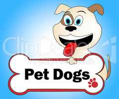 Pet Dogs Means Domestic Animal And Canine