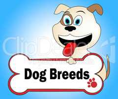 Dog Breeds Shows Purebred Pets And Pet