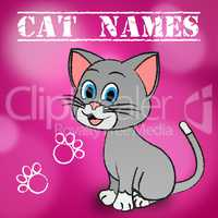 Cat Names Represents Pedigree Feline And Kitten