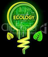 Ecology Words Represents Light Bulb And Earth