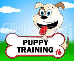 Puppy Training Represents Instruction Trainers And Canine
