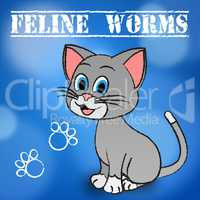 Feline Worms Indicates Domestic Cat And Cats