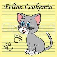 Feline Leukemia Represents Domestic Cat Cancer Illness