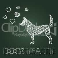 Dogs Health Shows Pups Care And Attention