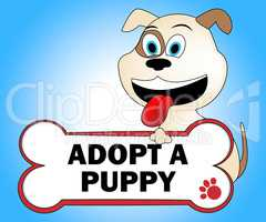 Adopt Puppy Shows Looking After Dog Pets