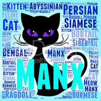 Manx Cat Represents Breeds Pets And Pedigree