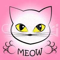 Cat Meow Means Feline Noise And Sound