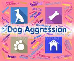 Dog Aggression Represents Angry Aggressor And Pet