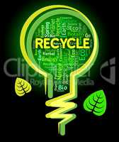 Recycle Lightbulb Indicates Eco Friendly And Ecological