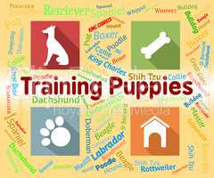 Training Puppies Represents Instruction Pedigree And Pets