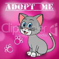 Adopt Cat Indicates Adoption Felines And Pet