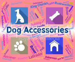 Dog Accessories Indicates Canine Accessory And Pedigree