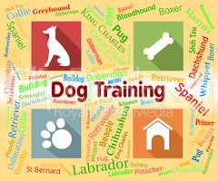 Dog Training Shows Pet Puppy And Pedigree