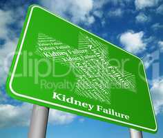Kidney Failure Indicates Lack Of Success And Advertisement