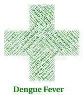 Dengue Fever Represents Poor Health And Affliction