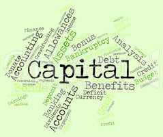 Capital Word Shows Fund Funding And Wordcloud