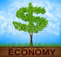 Economy Tree Represents American Dollars And Bank