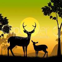 Deer Wildlife Indicates Safari Animals And Evening