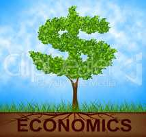 Economics Tree Indicates American Dollars And Branch