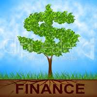 Finance Tree Means United States And Bank