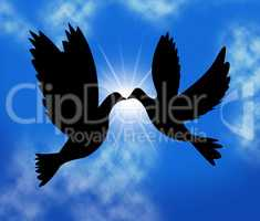 Peace Doves Indicates Flock Of Birds And Wildlife
