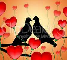 Love Birds Means Tenderness Wildlife And Compassion