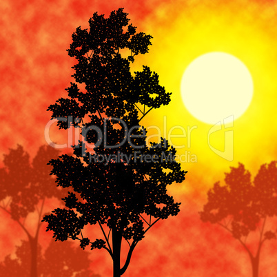Countryside Sunset Means Picturesque Nature And Warm