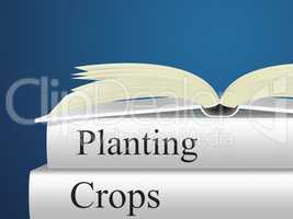 Planting Crops Indicates Plants Farmland And Cultivating