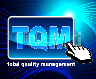 Total Quality Management Represents World Wide Web And Approval