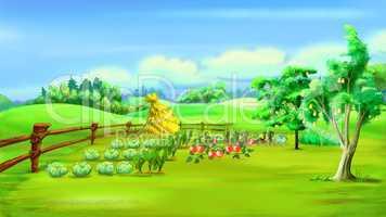 Rural Landscape with Vegetable Garden in a Summer Day