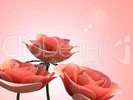 Copyspace Roses Means Romance Petal And Flora