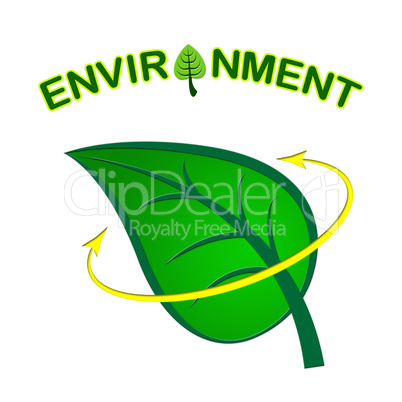 Environment Leaf Shows Earth Friendly And Conservation