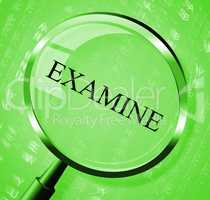 Examine Magnifier Means Investigate Magnify And Studying