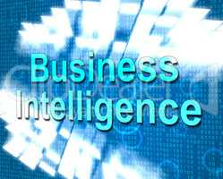 Business Intelligence Shows Know How And Biz