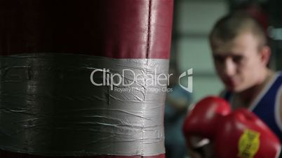 Training a boxer at the gym