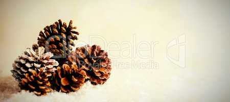 Pine cone decoration on fake snow