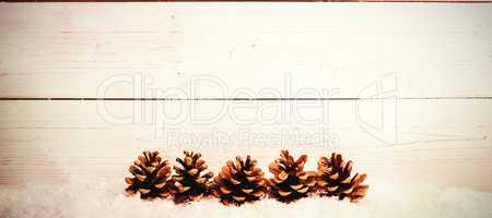 Pine cone decoration on snow