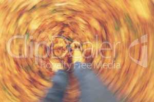 Motion Blur Walking in Autumn Fall Leaves
