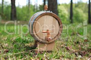 Oak Barrel In Forest