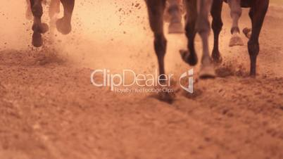 Horse Racing. Feet. Slow Motion