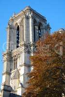 Notre-Dame Basilica, Paris, France, Frankreich
