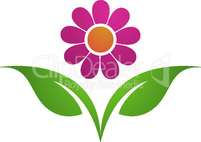 Beauty Vector flowers design logo Template icon