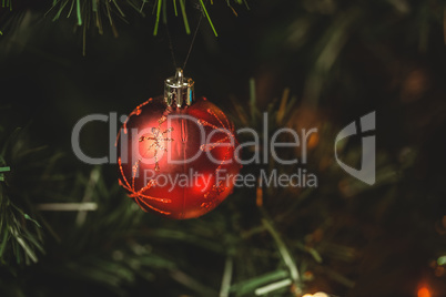 Close-up of christmas bauble hanging on christmas tree