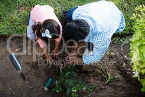Father and daughter planting a tree in garden at backyard
